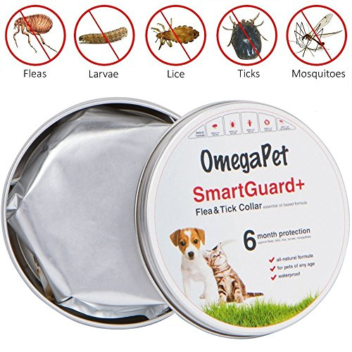 Dog Flea and Tick Collar, Natural Flea Collar for Dogs, Flea and Tick Prevention for Dogs Collar