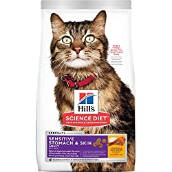 best cat food to prevent vomiting and diarrhea
