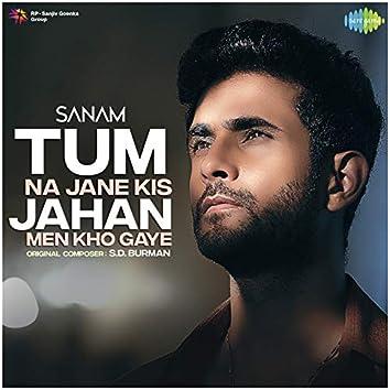 Tum Na Jane Kis Jahan Men Kho Gaye - Single