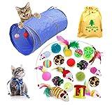 MQIAN 21PCS Juguetes para Paquete de Variedad para Gatitos, Set di Juguetes para Gatos Interactivo Ratón,Juguetes para Gatos con Plumas túnel