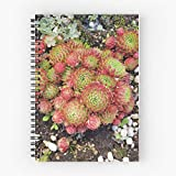 Plants Garden Succulents Botanical Tote Cotton Very Bag | Bolsas de supermercado de lona Bolsas de mano con asas Bolsas de algodón duraderas