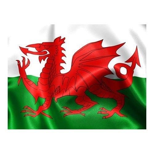 5Ft X 3Ft Wales Welsh Vlag met Oogjes Rode Draak One Size Kleur: wit
