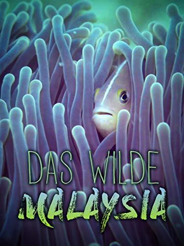 Das Wilde Malaysia