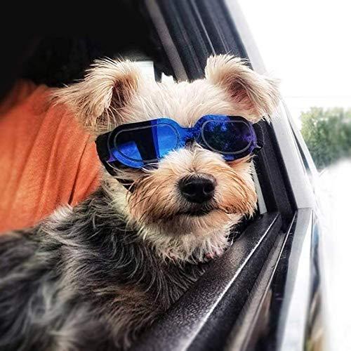 NXL Haustier-Hundeschutzbrillen UV-Sonnenbrille Winddichter Schutz Hündchen-Welpen-Sonnenbrille, Hundebrille Für Kleine Mittelgroße Hündchen
