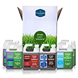 Simple Lawn Solutions X Ryan Knorr - Lawn Essentials Bundle Box - 6 Piece Set- Lawn Food 16-4-8 NPK, Lawn Energizer Booster, Root Hume- Humic Fulvic, Soil Hume- Seaweed, Humic Fulvic