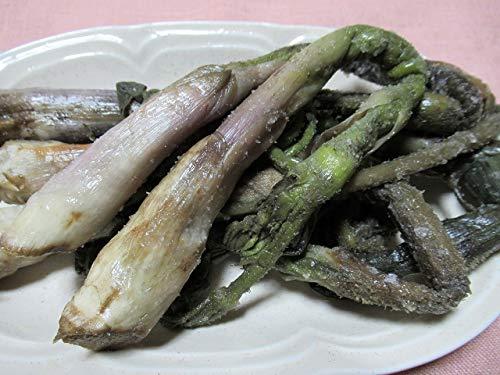 奥会津旬彩館 国産 天然山菜 塩蔵(塩漬け)うど 1kg