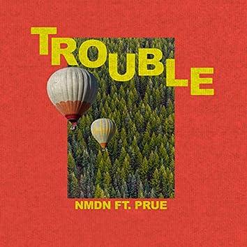 Trouble (feat. Prue)