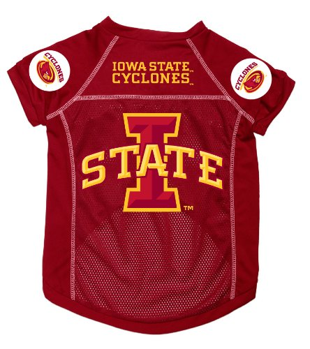 Dog Zone NCAA Pet Football Jersey, Medium, Iowa State University