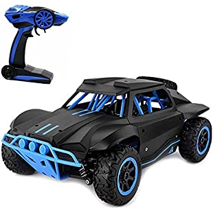 Rabing RC Car 118 High Speed 2.4GHz Wireless Remote Control Car Electric Rock Crawler Vehicle (Black):Maskedking