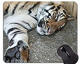Yanteng Tigre en el Paisaje Alfombrilla de ratón, Alfombrillas de ratón Animales con Bordes cosidos