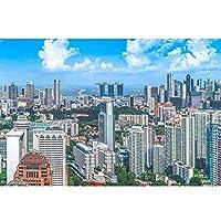 木製ジグソーパズルアダルトチルドレン500から6000の教育おもちゃの高難易度シンガポール都市の景観ビル市シリーズの漫画のおもちゃの装飾のギフト (Color : Puzzle, Size : 6000PCS)