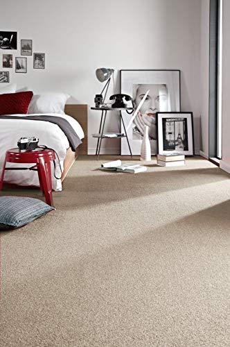 RugsX Einfarbiger Teppich Eton für Zimmer, Wohnzimmer, Schlafzimmer, Teppichboden Auslegware, beige, Verschiedene Größen, 300x500 cm