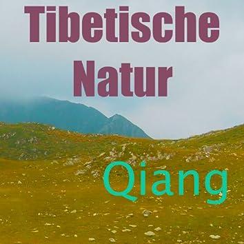 Tibetische Natur