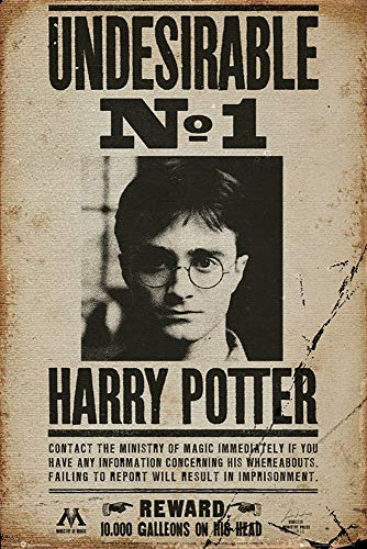 HARRY POTTER GB Eye LTD, Poster, 61 x 91,5 cm