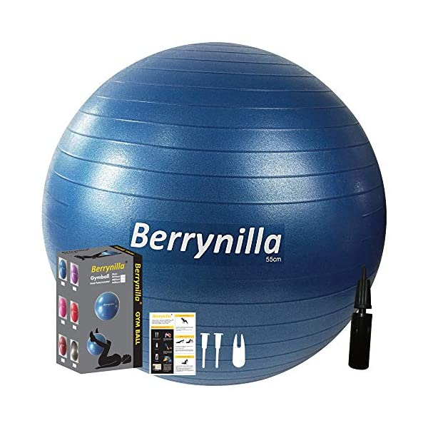 Berrynilla Professional Exercise Ball w/Pump for Fitness, Stability, Balance, Gym...