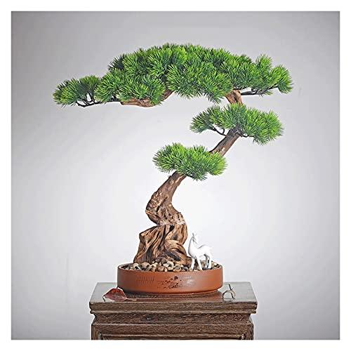 Artificial Bonsai Bonsai artificial Bonsai Beating Pine Tree, planta en maceta de árbol de pino Podocarpus falso de 17 pulgadas, plantas de la casa de imitación para la pantalla de la oficina en casa