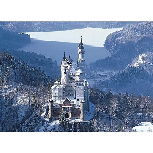JHGFJD Puzzel met 1000 stukjes, Duits zwanenburg spel voor volwassenen en jongeren, spelen thuis entertainment speelgoed home decoratie 75 x 50 cm