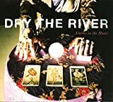 Songtexte von Dry the River - Alarms in the Heart