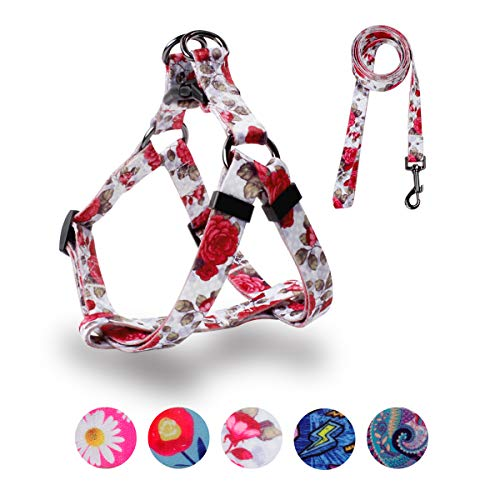 QQPETS Dog Harness Leash Set, Adjustable Heavy Duty No Pull Halter Harnesses for Puppy Exra Small Dogs, Back Clip, Anti-Twist, Perfect for Walking