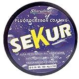 Sbirulino Hilo Sekur de fluorocarbono 100 m (0,16)