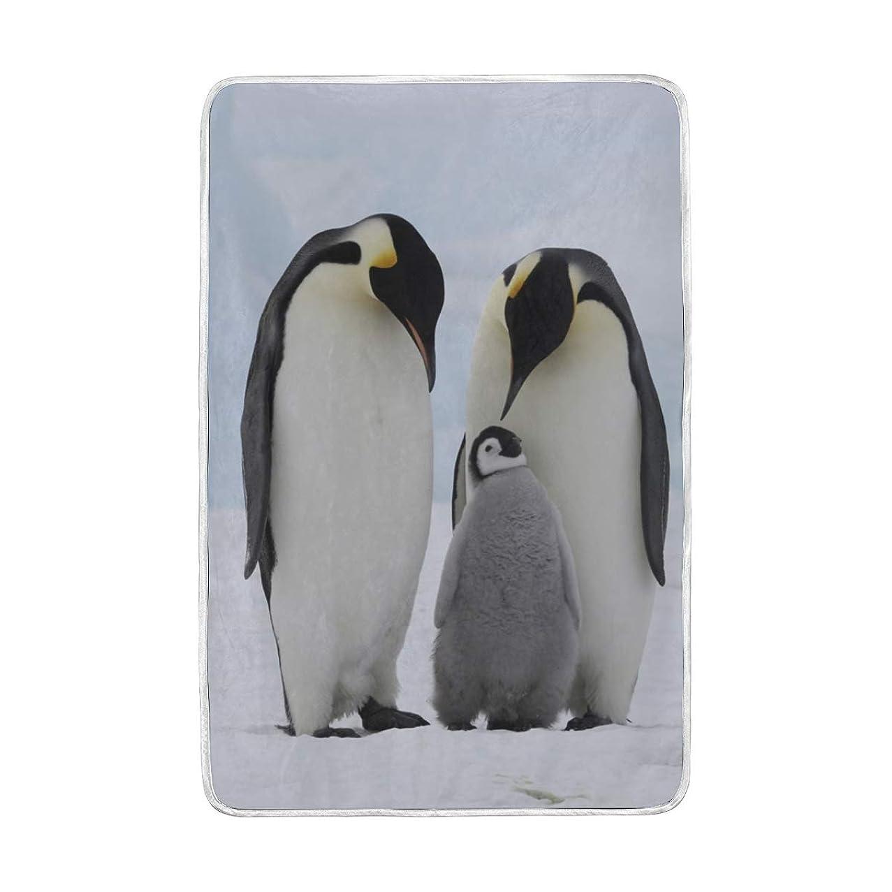 誤家事をする限界毛布 ペンギン シングル ダブル 2枚合わせ 暖かい 軽い セミダブル 発熱 ブランケット 大判 マイクロファイバー 柔らか 保温 洗える 150x230