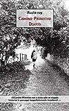 Camino Primitivo: Diario (Italian Edition)