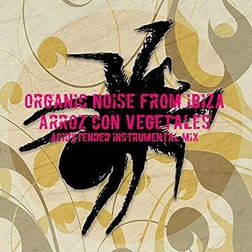 Arroz Con Vegetales (Acidxtended Instrumental Mix)