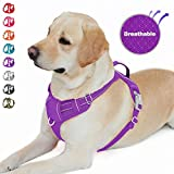 Best dog harness - BARKBAY No Pull Dog Harness Front Clip Heavy Review