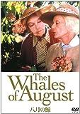 八月の鯨 [DVD] image