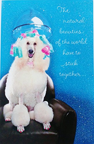 The Natural Beauties of the World Have To Stick Together - Happy Birthday Greeting Card w/Poodle Dog - Cute Funny Glitter Sparkly