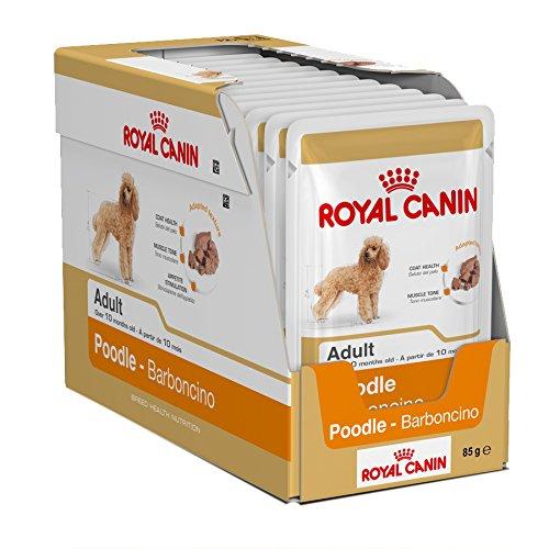 48x Royal Canin Pudel Wet Tasche Hundefutter von Maltby 's Speichert Beutel