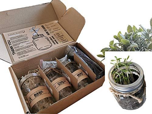 Set of 3: Indoor Herb Garden in Jars Rustic Eco Friendly Gift: Grow Your...