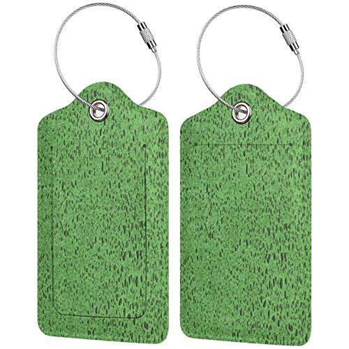 FULIYA Etiquetas para equipaje de viaje, etiquetas de identificación para tarjetas de visita, juego de 2, textura, superficie, lunares, color verde