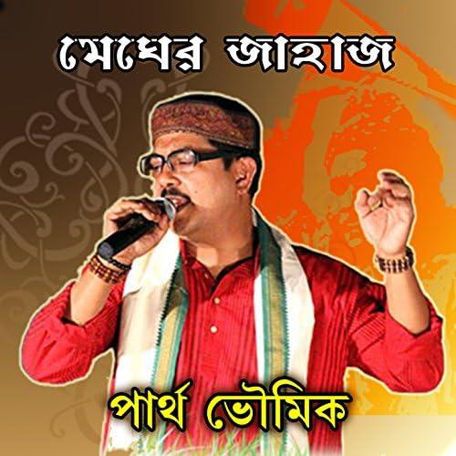Partha Bhowmik