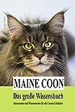 Maine Coon - Das große Wissensbuch: Interessantes und Wissenswertes für alle Coonie-Liebhaber