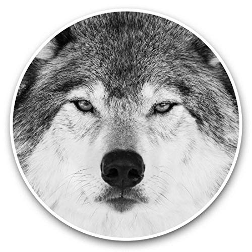 Impresionantes pegatinas de vinilo (juego de 2) 15 cm (bw) – Cara de lobo enojado divertido para portátiles, tabletas, equipaje, libros de chatarra, neveras, regalo genial #36222