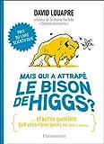 Mais qui a attrapé le bison de Higgs ? Et autres questions que vous n'avez jamais osé poser à haute voix