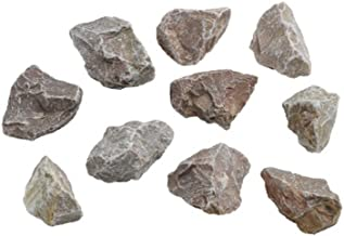 hand2mind Limestone Sedimentary Rock Specimens for Kids Geology Collections and Rotary Tumblers