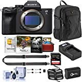 Sony Alpha a7S III Mirrorless Digital Camera Body Bundle with Neck Strap, Extra Battery, Charger, Backpack, 64GB SD Card, Corel Mac Software Kit and Accessories