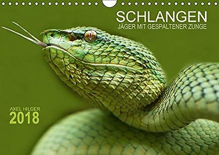 SCHLANGEN. JÄGER MIT GESPALTENER ZUNGE (Wandkalender 2018 DIN A4 quer): Für das Projekt Schlangen reiste der Fotograf Axel Hilger auf langen ... unserer Erde. (Monatskalender, 14 Seiten )