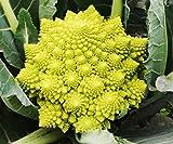 Semi di ortaggi pagoda Semi di cavolfiore dorato Cavolfiore giallo Cavolfiore verde Semi di ortaggi speciali 300 Capsule