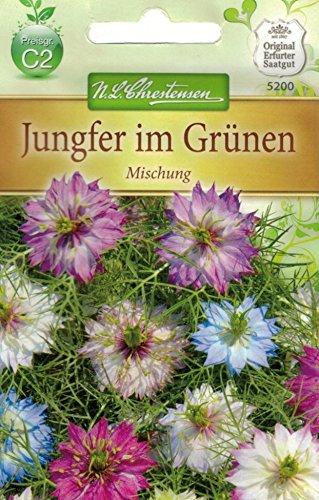 Chrestensen Jungfer im Grünen...