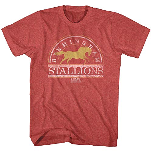 A&E Designs USFL T-Shirt Birmingham Stallions Red Heather Tee, XL