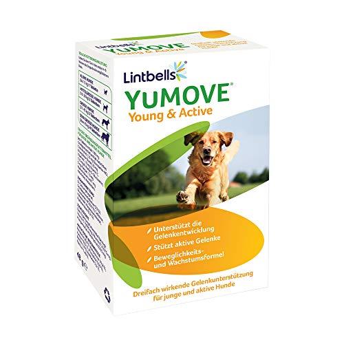 Lintbells -  YuMove Young &