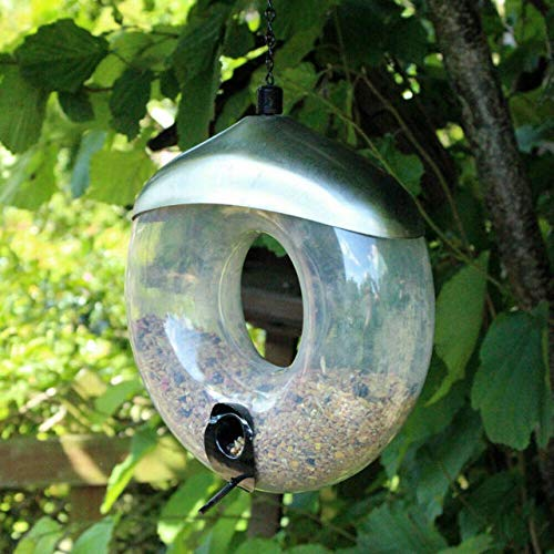 garden mile Deluxe Suspendu Donut Suet Boule de Graisse Oiseau nourricier. Jardin Oiseau mangeoires Mangeoire à graines Mangeoire à Cacahuètes Nettoyage Facile et Remplissage - Seed Donut Feeder