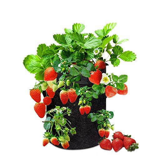 ECHOAN 2Pcs Erdbeere Pflanzen Tasche, Pflanzsack, 10 Gallons mit Griffen Vliesstoff Pflanzen, 8 seitliche Wachstumstaschen Schwarz