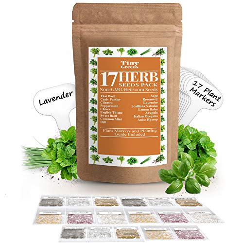 Herb Seeds - 17 Garden Seeds Variety Seed Pack - 5700 Gardening Seeds - Heirloom Non-GMO - Herb Seeds for Planting Indoors or Outdoor | Thyme, Mint, Chives, Dill, Cilantro, Parsley, Basil, Arugula