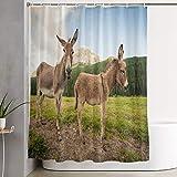 KGSPK Cortinas de Ducha,Dos Lindos burros en Dolomitas Italia,Cortina de baño Decorativa para baño,bañera 180 x 180 cm
