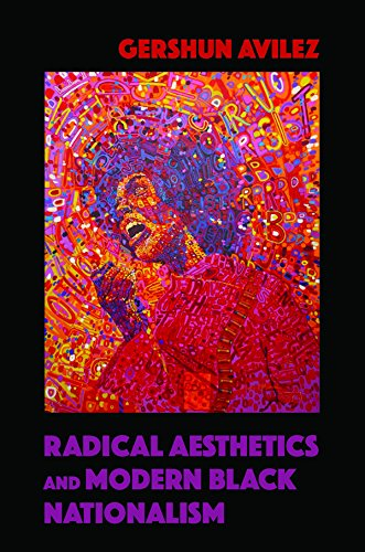 Radical Aesthetics and Modern Black Nationalism (New Black Studies Series)