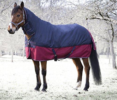 Pferde Outdoordecke Weidedecke Equitheme TYREX 1200 mit Halsteil Denier 200g Füllung, wasserdicht, atmungsaktiv, Kreuzgurte, Schweiflatz, 155 cm